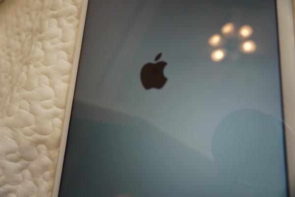 mineo(マイネオ) iPad miniLRG_DSC02852-min