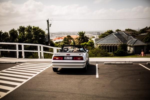 駐車場 シェアリングpexels-photo-101585