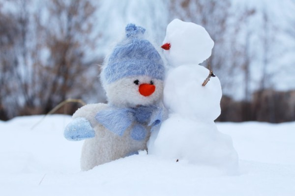 冬 pexels-photo-269370