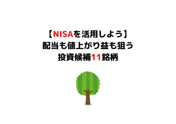 NISA 成長株