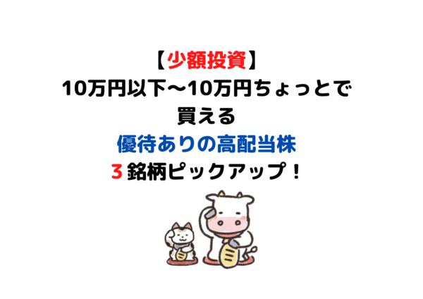 10万円以下 株主優待 (1)