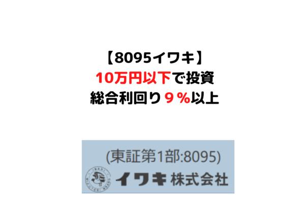 8095 イワキ