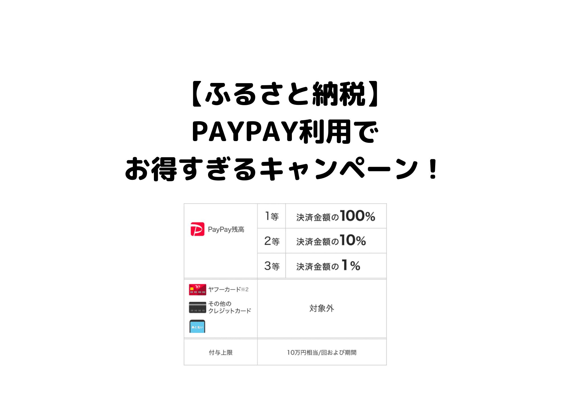 ふるさと納税PayPay